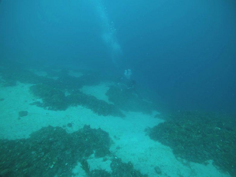 Ολοκλήρωση παρέμβασης Εφορείας Εναλίων Αρχαιοτήτων και εταίρων της σε ναυάγια της Αλοννήσου και του Παγασητικού