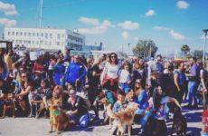 Dog Walk 2018 αύριο στην παραλία του Βόλου από την Φιλοζωική Ομάδα