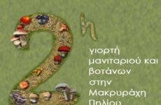Η 2η Γιορτή Μανιταριών και Βοτάνων στη Μακρυρράχη Πηλίου