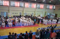 """Κύπελλο Body Contact """"Midori Cup"""" της Ελληνικής Ομοσπονδίας Kick Boxing"""