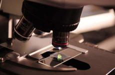 Πειραματικό τεστ αίματος κάνει διάγνωση καρκίνου σε δέκα λεπτά