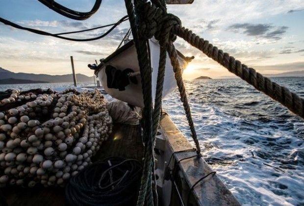 Προσωρινή παύση αλιευτικών δραστηριοτήτων λόγω Covid-19;