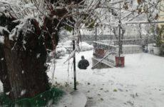 Επί ποδός οι υπηρεσίες του Δήμου Ρήγα Φεραίου για την αντιμετώπιση της χιονόπτωσης