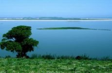 Η Ελλάδα εκπροσωπείται από την Περιφέρεια Θεσσαλίας με το έργο της Λίμνης Κάρλα