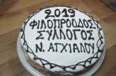 Κοπή πρωτοχρονιάτικης πίτας των τμημάτων του φιλοπροόδου συλλόγου Νέας Αγχιάλου