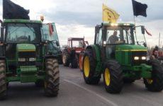 Ομόφωνη στήριξη του Δ.Σ. Ρήγα Φεραίου στον  αγώνα των αγροτών
