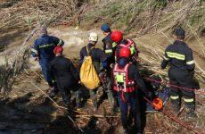 Πυροσβέστες διέσωσαν σκύλο στην Αγριά