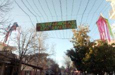 Πολύχρωμη Αποκριά στον Δήμο Ρήγα Φεραίου