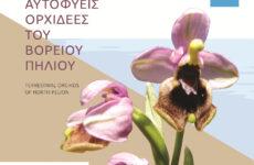 Γνωριμία με τον κόσμο της άγριας ορχιδέας του Β. Πηλίου  μέσα από έντυπο της Περιφέρειας Θεσσαλίας