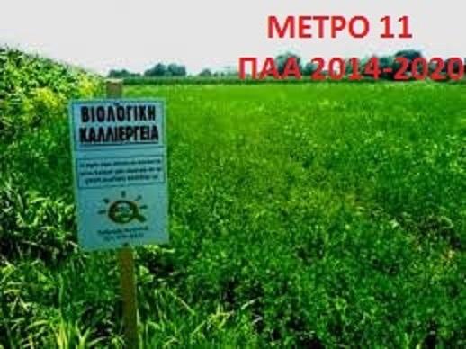 Εκτός του προγράμματος Βιολογικής Καλλιέργειας η πλειοψηφία αγροκτηνοτρόφων του Δήμου Ρήγα Φεραίου