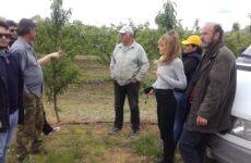 Η Ανυπότακτη Θεσσαλία στις χαλαζόπληκτες περιοχές στο πλευρό των αγροτών