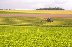 Νέα Σχέδια Βελτίωσης στο Πρόγραμμα Αγροτικής Ανάπτυξης 2014-2020 της Περιφέρειας Θεσσαλίας