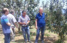 Επίσκεψη του βουλευτή Μαγνησίας Αθ. Λιούπη στις πληγείσες περιοχές του Δήμου Ζαγοράς- Μουρεσίου