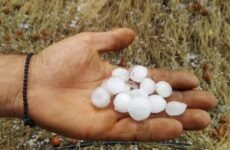 Καταστροφή στις αγροτικές καλλιέργειες του Πηλίου  προκάλεσε  η χαλαζόπτωση