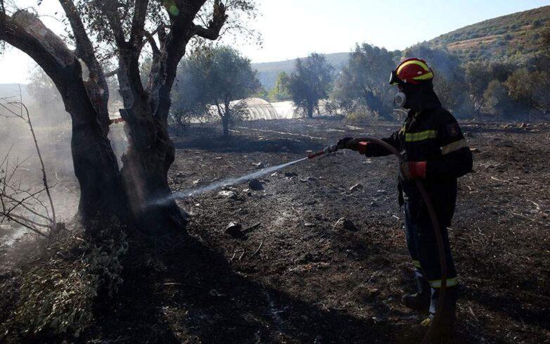 Σχεδόν 60 πυρκαγιές ξέσπασαν σε 24 ώρες – Στο «κόκκινο» ο κίνδυνος την Κυριακή