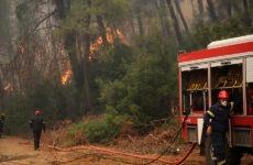 Φωτιά στη Νεράιδα Αλμυρού