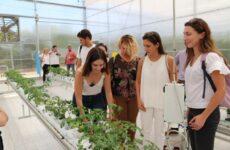 Ημέρα ανοικτής επίσκεψης στις Θερμοκηπιακές Εγκαταστάσεις του Αγροκτήματος του Π. Θ. στο Βελεστίνο