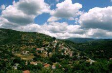 Φυσικό στολίδι για το Δήμο Ρήγα Φεραίου η Κερασιά
