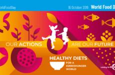 16 Οκτωβρίου 2019: Παγκόσμια Ημέρα Επισιτισμού