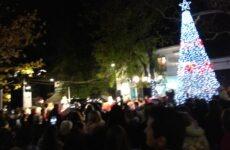 Φωταγώγηση του Χριστουγεννιάτικου δέντρου στην πλατεία της Αργαλαστής