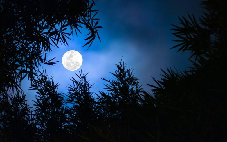 Xειμερινό ηλιοστάσιο: Έρχεται η μεγαλύτερη νύχτα του χρόνου