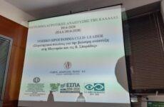 «Στρατηγικοί Πυλώνες για την Βιώσιμη ανάπτυξη στη Μαγνησία και τις Β. Σποράδες»