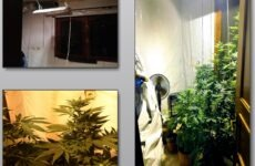 Εντοπίστηκε πλήρως εξοπλισμένο εργαστήριο υδροπονικής καλλιέργειας κάνναβης στη Λάρισα