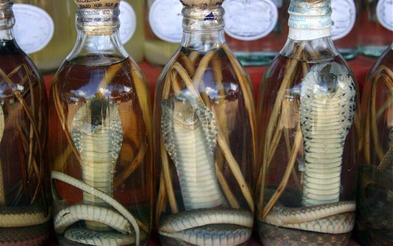 Κινέζοι επιστήμονες: Από τα φίδια προέρχεται πιθανότατα ο νέος κοροναϊός
