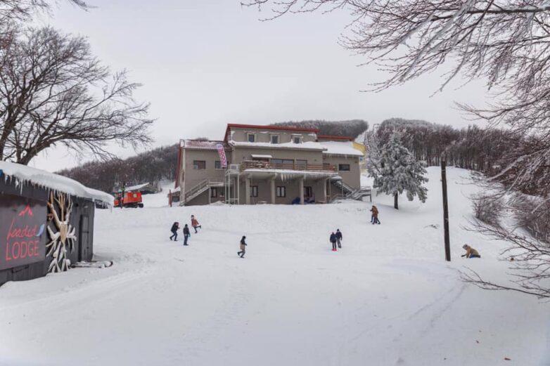 Άμεση λειτουργία των Χιονοδρομικών ζητά η Ένωση Ξενοδόχων Μαγνησίας