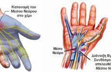 Επιτυχής και οριστική λύση στην αποκατάσταση του κερκιδικού και άλλων νεύρωντου χεριού