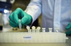 Οι Έλληνες βιοεπιστήμονες για τη πανδημία: «Είμαστε μόνο στην αρχή με πολλές ελλείψεις»