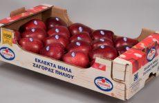 Ο Αγροτικός Συνεταιρισμός Ζαγοράς Πηλίου για τις καταστροφές από χαλαζόπτωση
