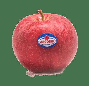 Αγροτικός Συνεταιρισμός Ζαγοράς Πηλίου: Το φθινόπωρο ξεκινάει με προϊόντα ZAGORIN