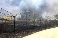 Φωτιά σε θερμοκήπια σε κτήμα στο Διμήνι