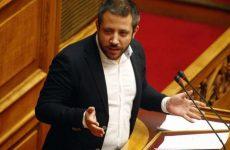Αλ. Μεϊκόπουλος: Χάος & ανισότητες στις αντιρρήσεις για τους δασικούς χάρτες