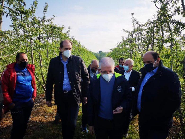 Χρ. Τριαντόπουλος: Σε περιοχές της Μακεδονίας μαζί με τον πρόεδρο του ΕΛΓΑ για τον παγετό