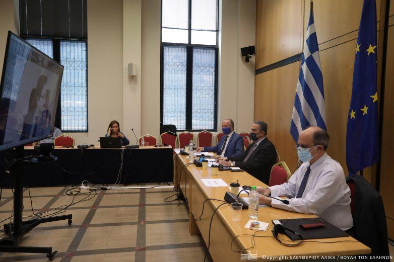 Συμμετοχή Αθ. Λιούπη στην τηλεδιάσκεψη Κοινοβουλευτικών Ομάδων Φιλίας Ελλάδας-Εσθονίας