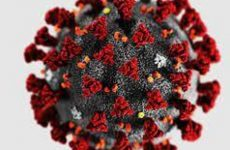 Τριάντα θετικά κρούσματα στα rapid test  στη Θεσσαλία