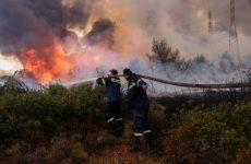 Φωτιά το απόγευμα στο Σέσκλο