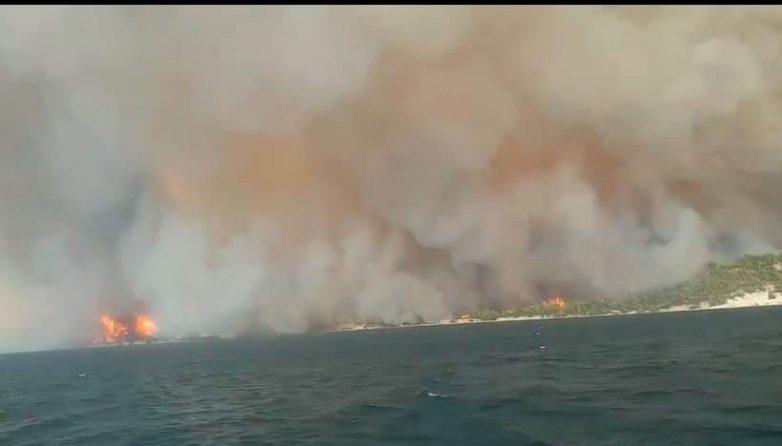 Φωτιά στην Εύβοια: Οι φλόγες έφτασαν στη θάλασσα στις Ροβιές