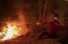 Φωτιά στην Εύβοια: Ολονύχτια μάχη με τις αναζωπυρώσεις – Υπεράνθρωπες προσπάθειες πυροσβεστών και κατοίκων