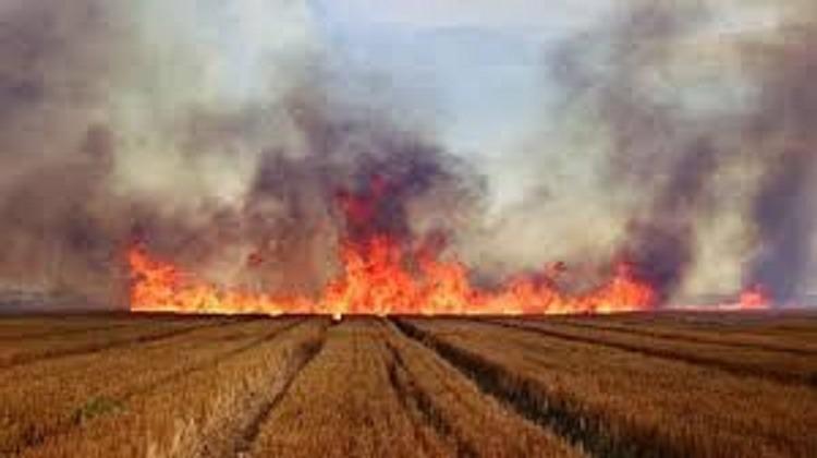 Απαγόρευση καύσης φυτικών υπολειμμάτων καλλιεργειών