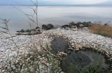 Π.Π.Μ.: Διαρροή βρώμικων λυμάτων της ΔΕΥΑΜΒ στο Αγκίστρι